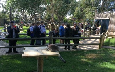 Year 11 Business Studies students visit Drusillas