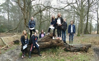 Year 8 Geography Field trip to Ashdown Forest