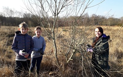 Update on student work on Chailey Common
